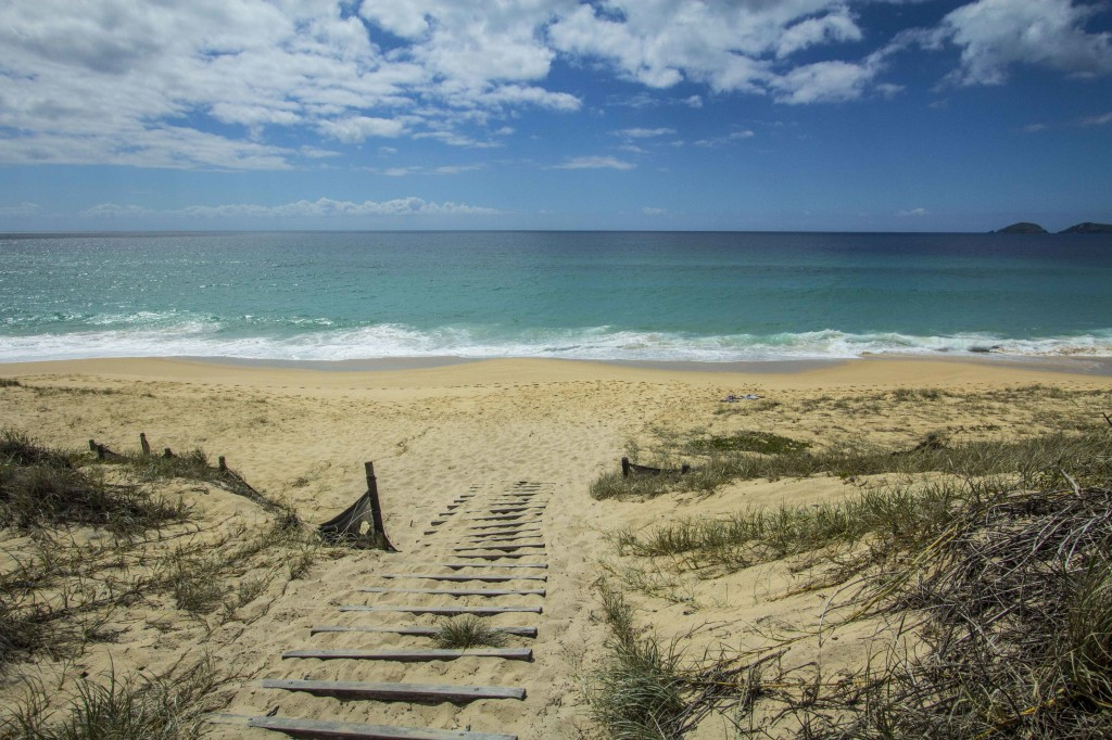 Landscape photo of beach entry for camping at myall lakes