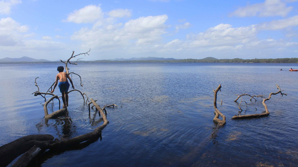 Landscape photo of Dee Corner while camping at Myall Lakes