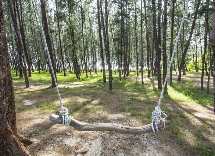 Koh Adang Forest Swing