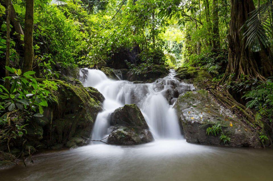 Jungle Trekking in Thailand to Kratengjeng Waterfall