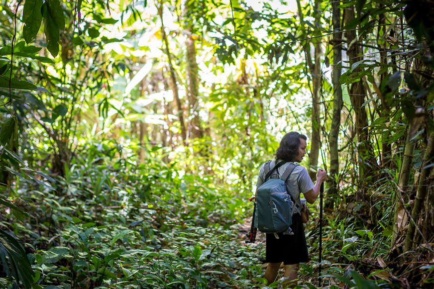 jungle-trekking-in-thailand