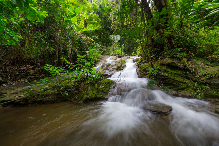 kratengjeng-waterfall-jungle-trek-2