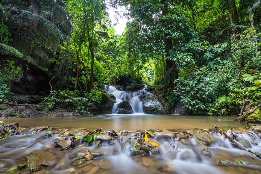 swimming-pool-while-jungle-trekking-in-thailand