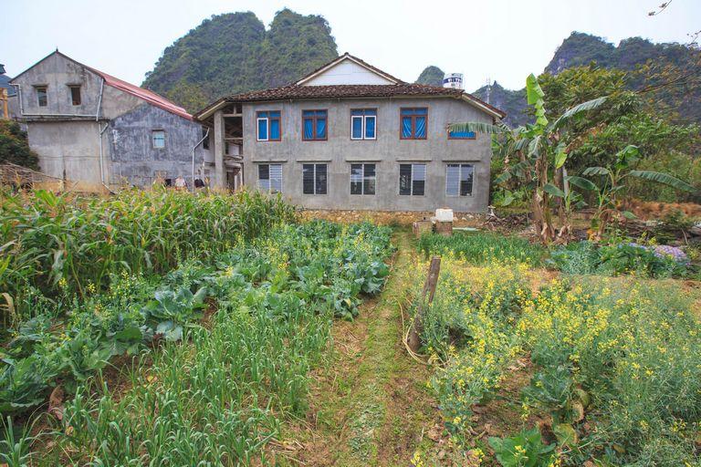 Rural Vietnam Homestay