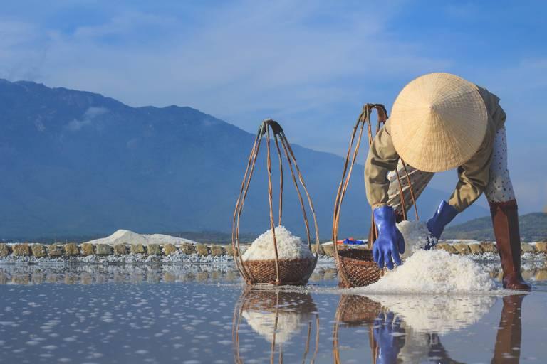 Ninh Hoa Salt Fields