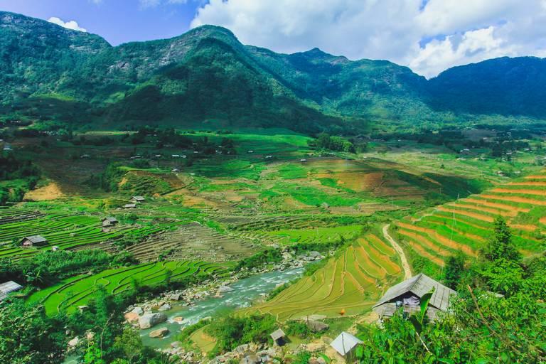 Rice Terraces at Sapa