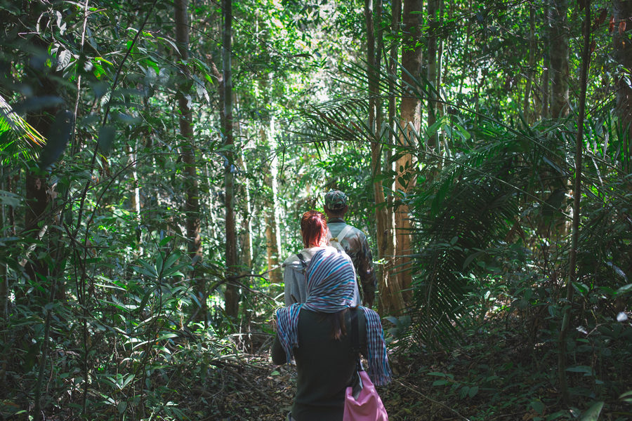 Jungle Trekking at Khao Yai National Park