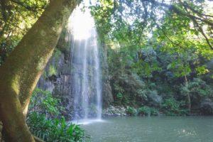 Millaa Millaa Falls - Atherton Tablelands