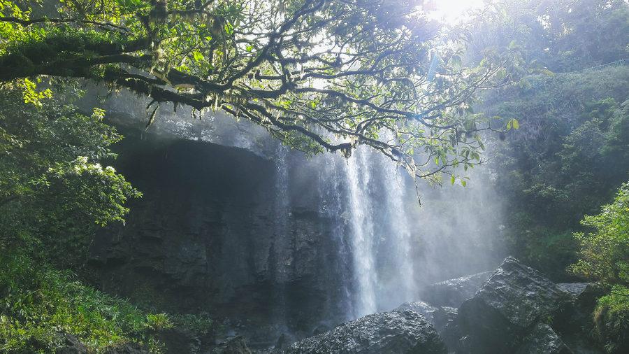 Zilzie Falls Atherton Tablelands