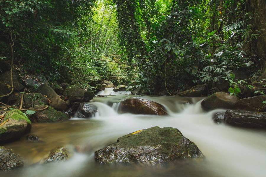 Khun Korn Waterfall Stream