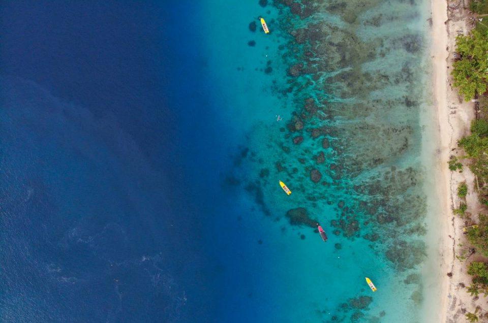 Guide to Malekula Island, Vanuatu