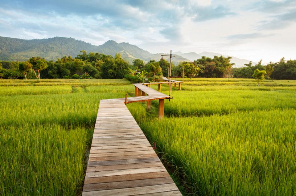 Top 9 Hotels in Chiang Rai (Budget & Luxury Options)