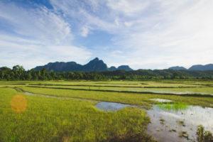 Laos Travel Itinerary