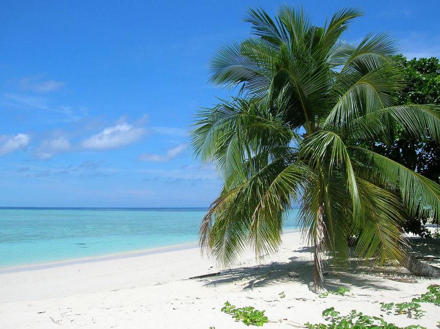 Sipidan Island, Sabah Malaysia