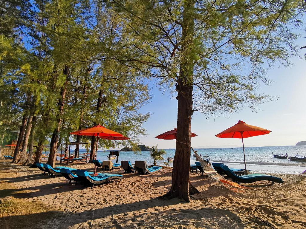 Wapi Resort 2