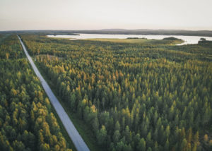 Things to do in Rovaniemi