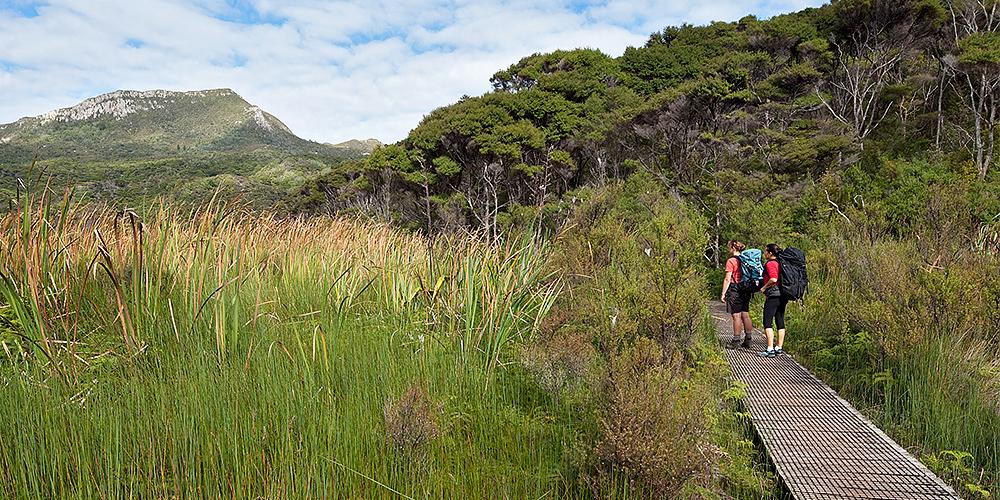 Great Barrier Island - Kaitoke Hot Springs Track (NZ DOC)