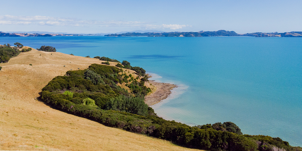 Rakino Island - Waiheke From Above Pohutukawa Bay (Nathan Hayes)