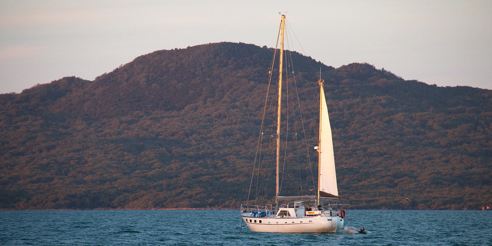 Rangitoto Island - Sailboat With View of Rangitoto