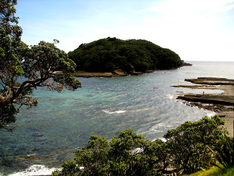 Goat Island Marine Reserve - North of Auckland