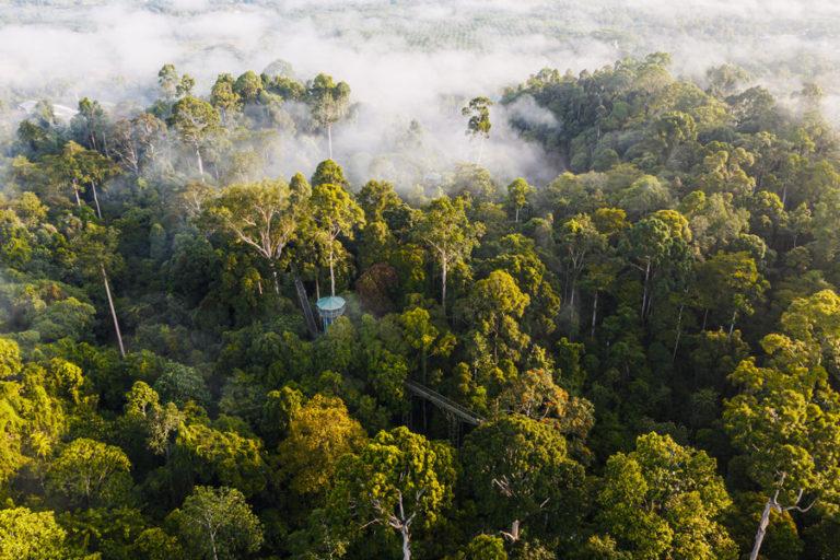 Maliau Basin, Sabah Malaysia