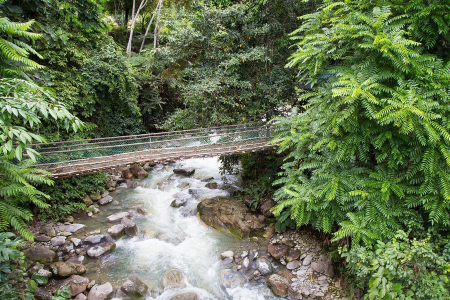 Poring Hotspring Canopy Walk in Sabah Malaysia