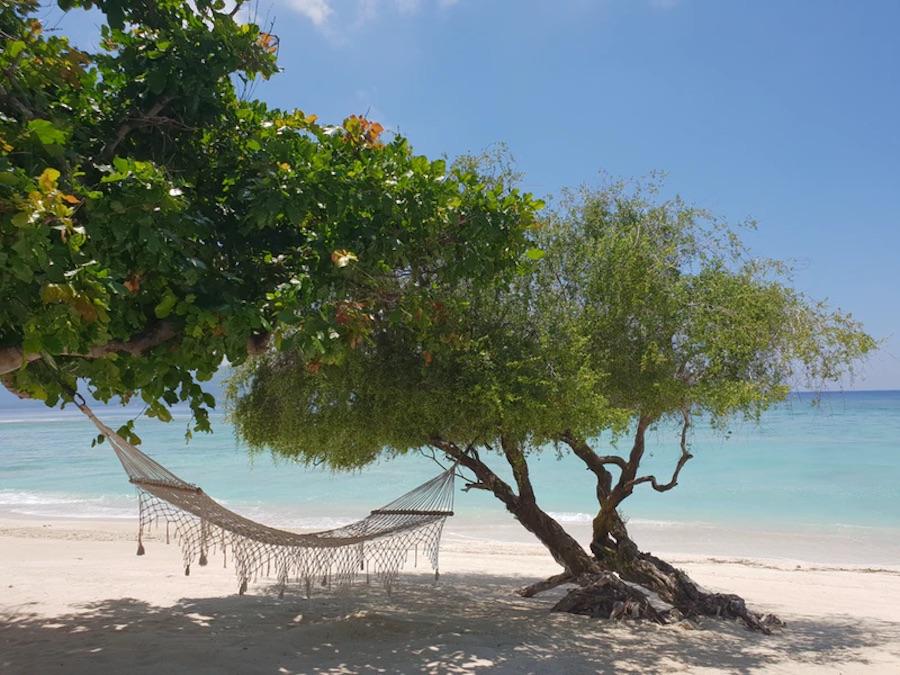 Beaches on Gili T