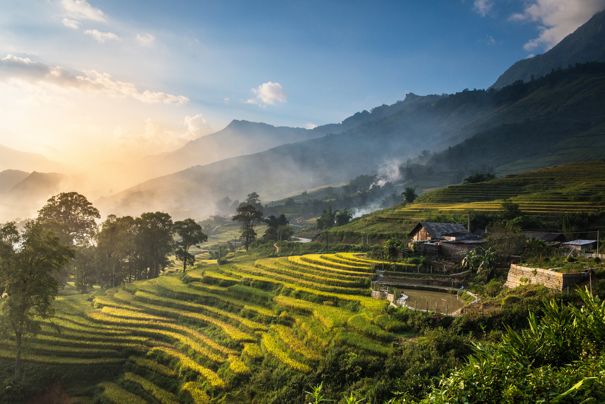 Terraced Rice Fields in Sapa Vietnam